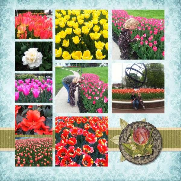 Pella Tulip Time page 1