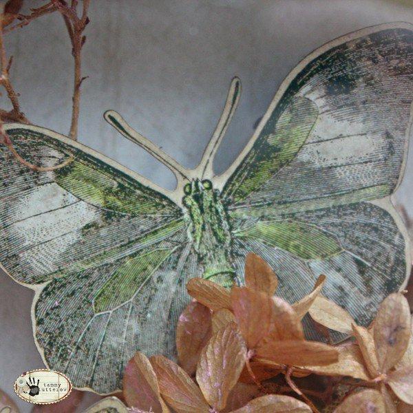 Tim Holtz Idea-ology: Butterfly Curio