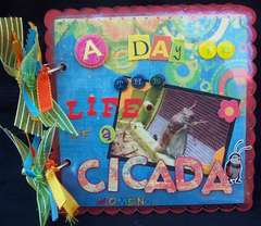A Day in the Life of a Cicada - mini album