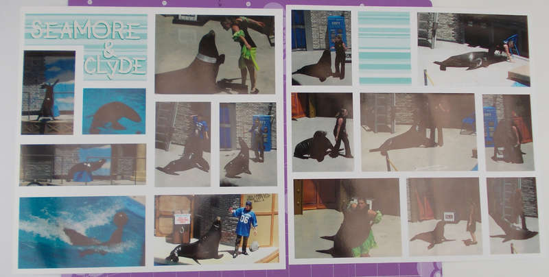 Seamore & Clyde from Sea Lions Live