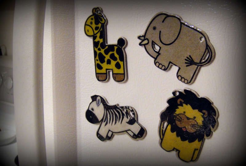 Maya Road Zoo Animals Magnets