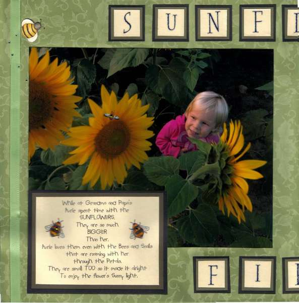 Sunflower, bees and snails