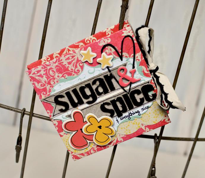 Sugar and Spice Mini Album