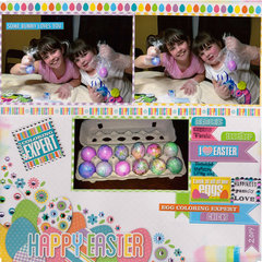 Egg Coloring Experts