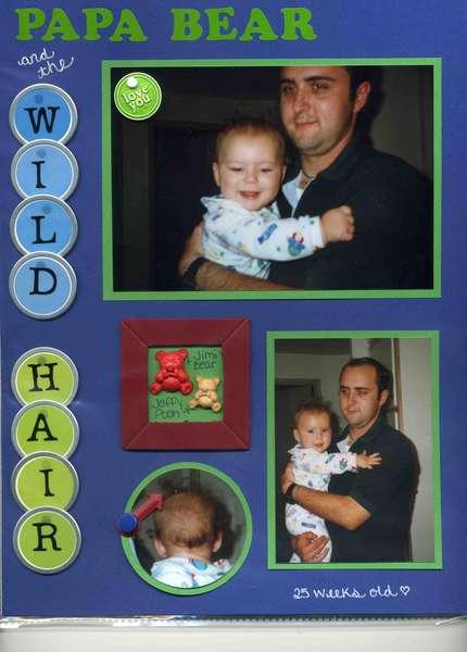 Papa Bear and the Wild Hair
