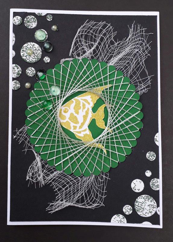 Fish Spirelli Card