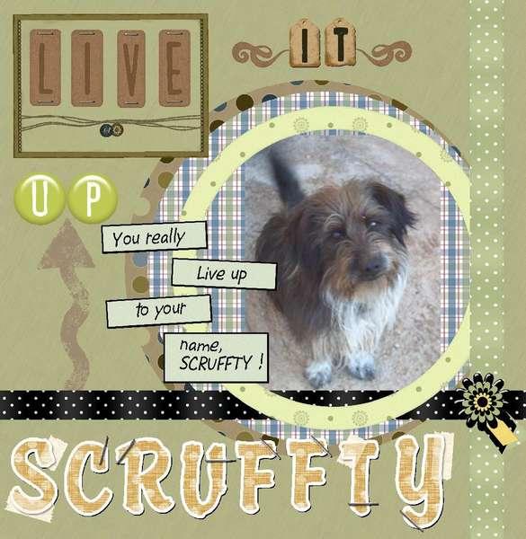 Live it up Scruffty
