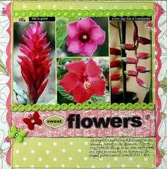 Sweet Flower Garden