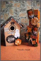 Haunted House Amber ***Petaloo***