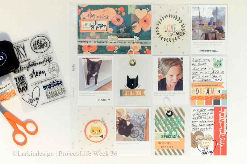 Project Life 2015 Week 36