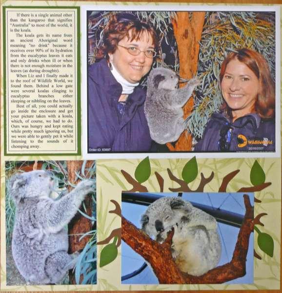 Koalas, right page