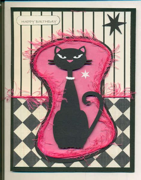 Nifty Fifties Cat