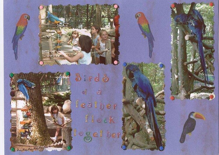 Zoo Album for my Niece (pg 11)