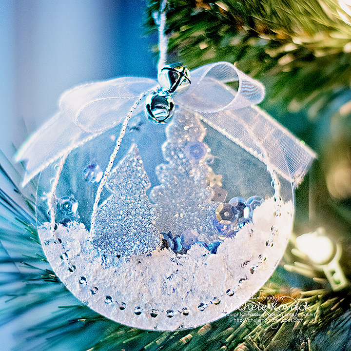 Clear Shaker Ornament!