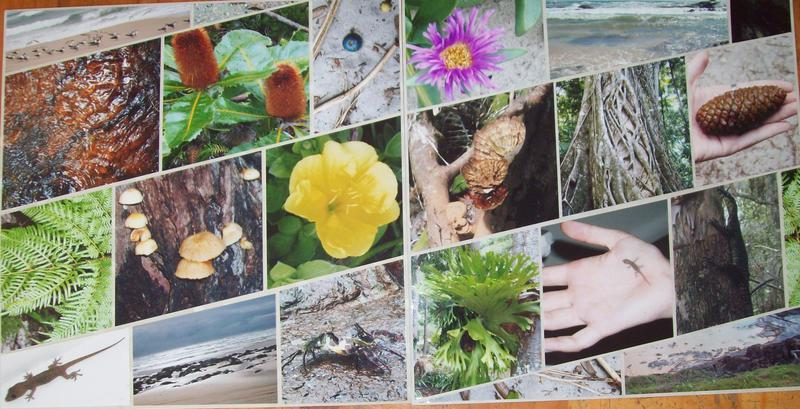 Jamie's Fraser Island Images, double page LO
