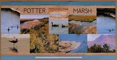 Potter Marsh, Alaska