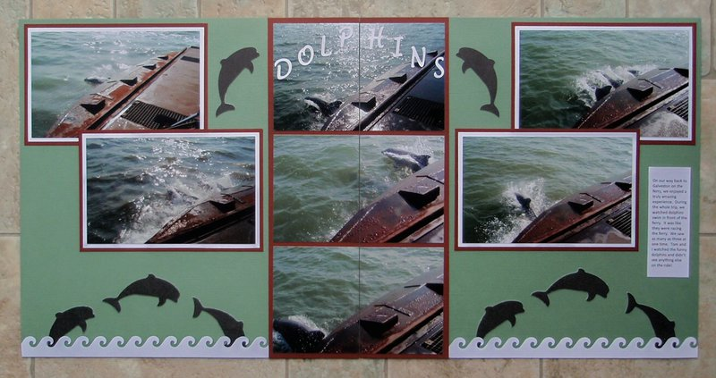 Dolphins of Galveston Bay, TX