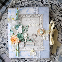 Baby Boy Book *Maja Design DT*