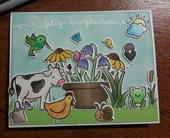 Birthday in the farm