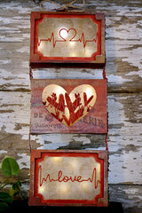 Heartbeat Curio Box Trio