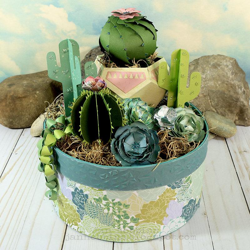 Succulent Home Decor Box