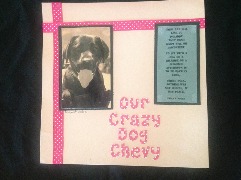 Our Crazy Dog Chevy