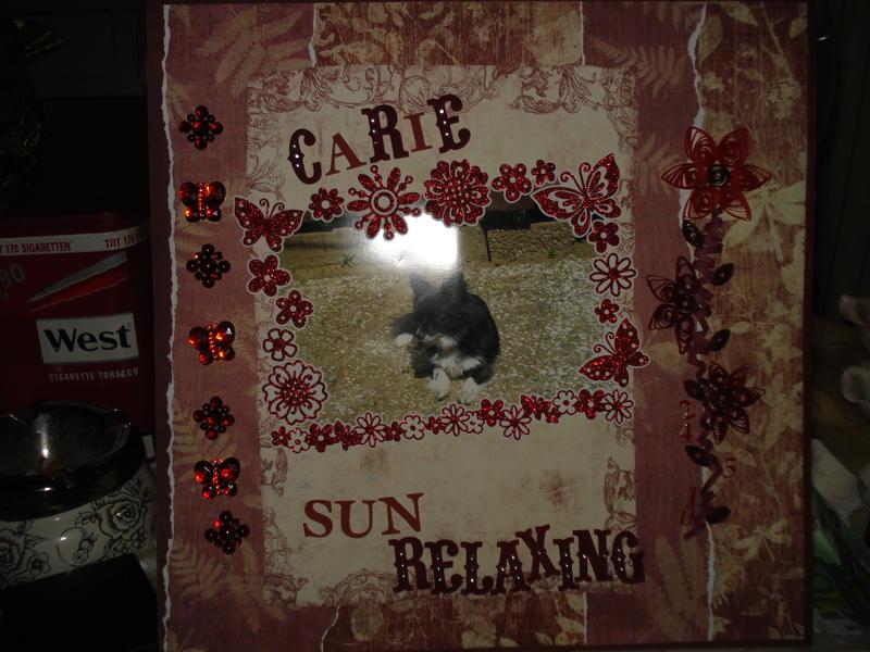car sun relaxing 24mei'10