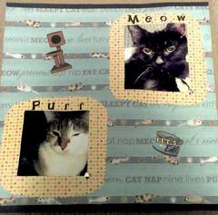 Meow, Purr