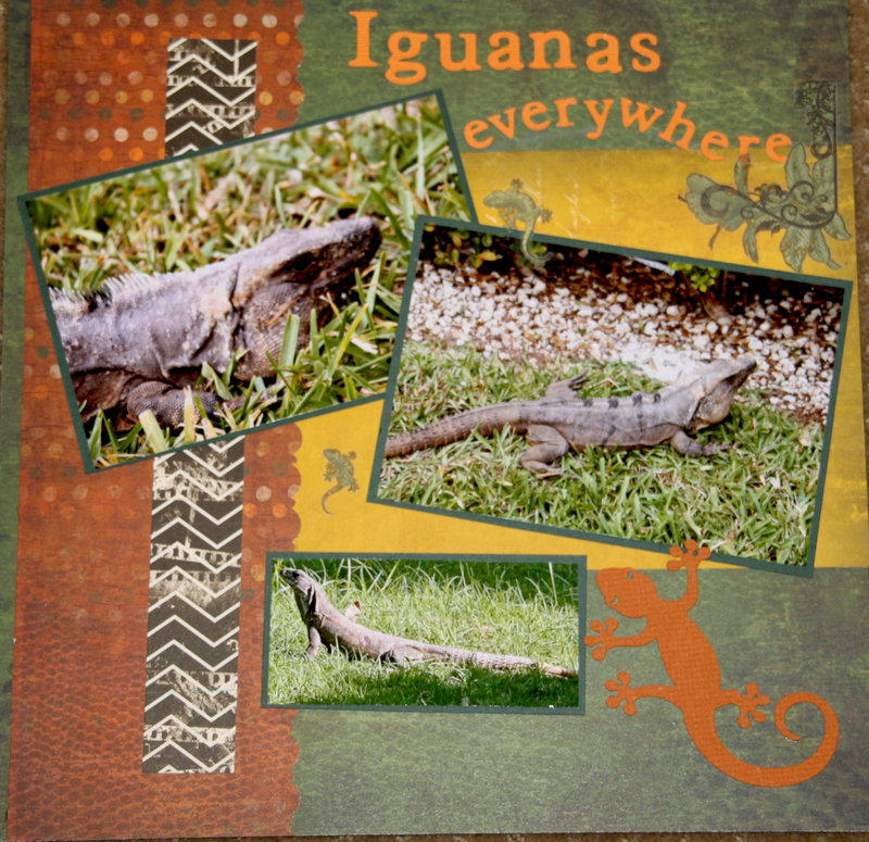 Iguanas everywhere page 2