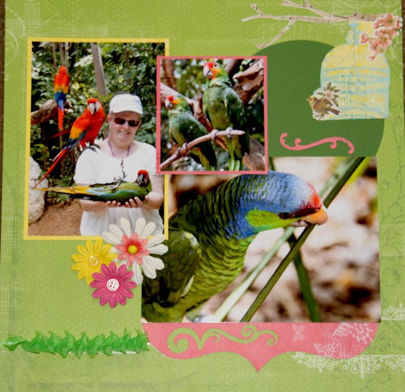 Beautiful Birds page 2