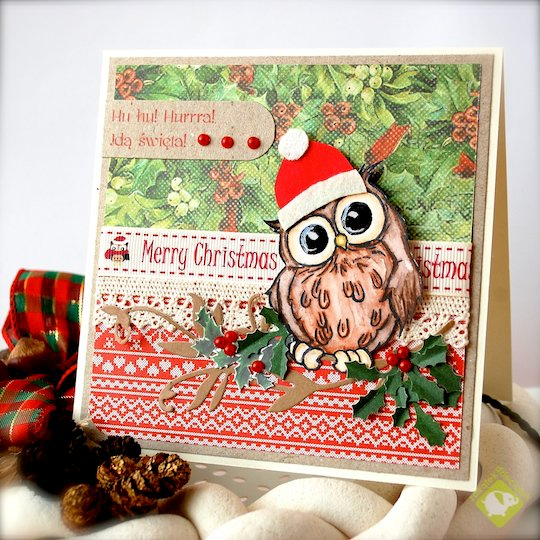 Hoo Hoo! Hooray! Christmas is coming! :) Christmas card with sweet owl.
