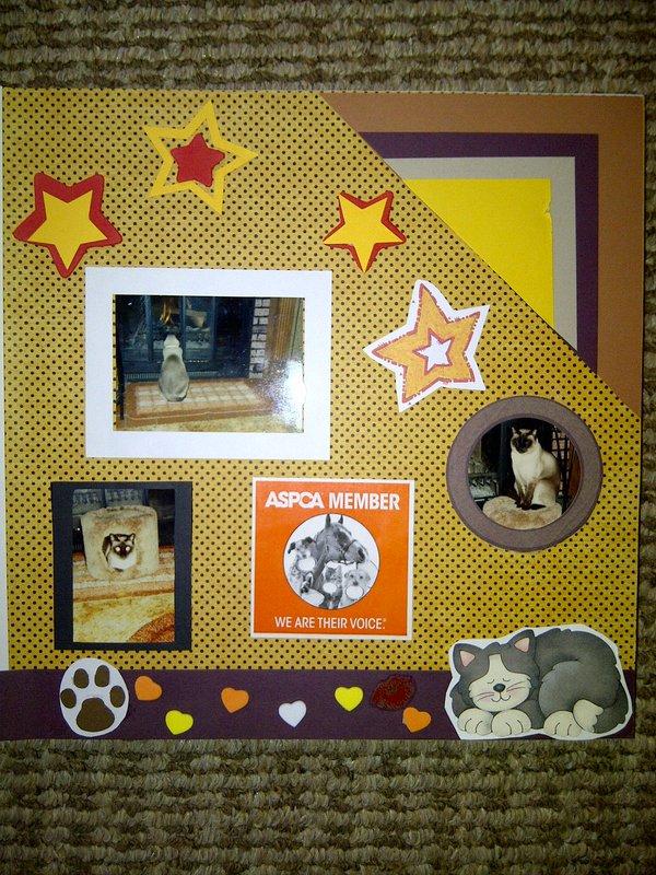 My Feline Family:  Simon Page 2