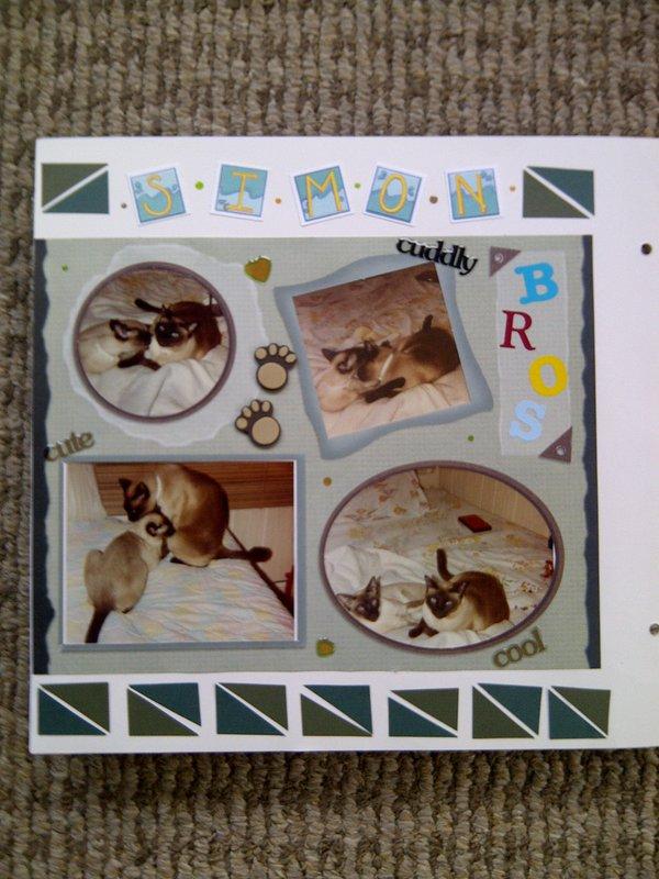 My Feline Family:  Simon & Sammy, Page 1