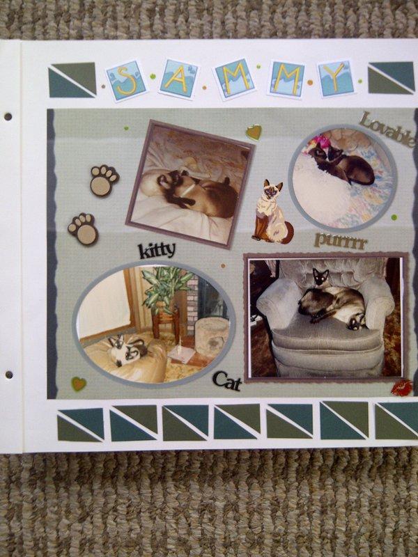 My Feline Family:  Simon & Sammy, Page 2