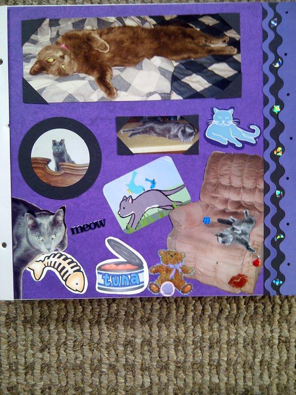 My Feline Family:  Smokey, Page 2