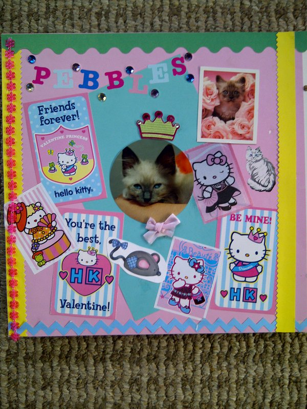 My Feline Family:  Pebbles, Page 1