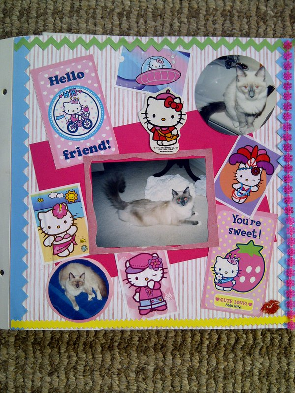 My Feline Family:  Pebbles, Page 2