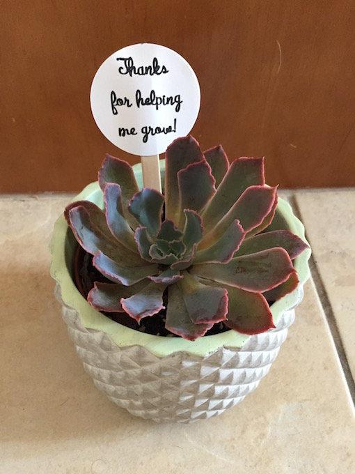 End of Year Teacher Gift