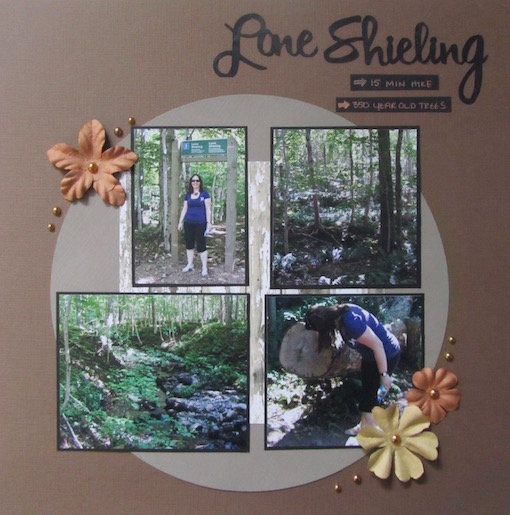 Lone Shieling