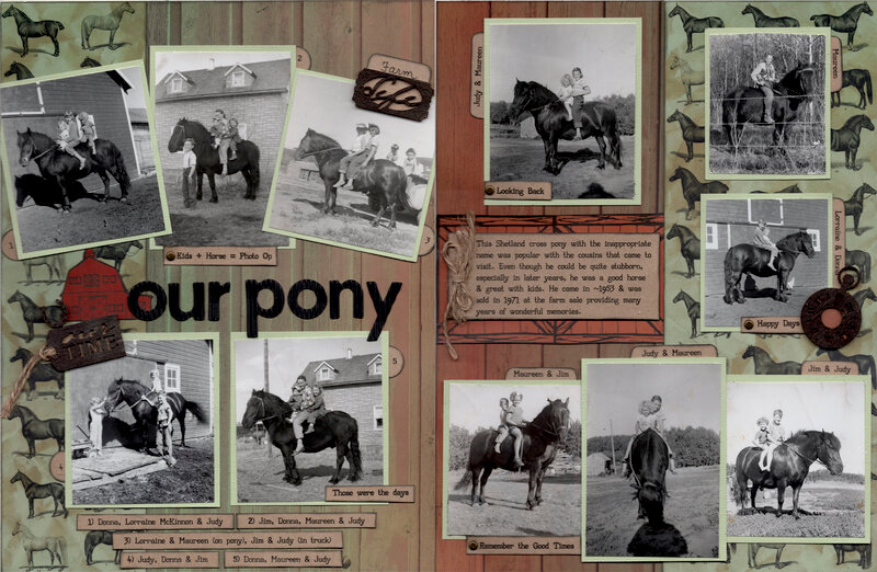 Our Pony