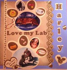 Love my Lab