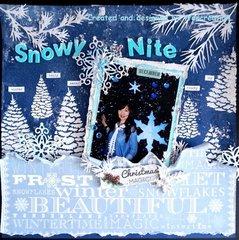 Snowy Nite