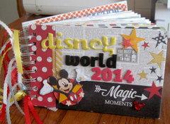 Disney World 2014