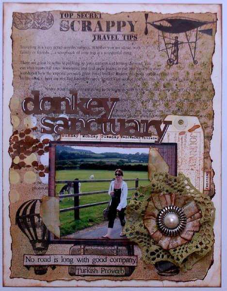 Donkey Sanctuary *Donna Salazar Designs*
