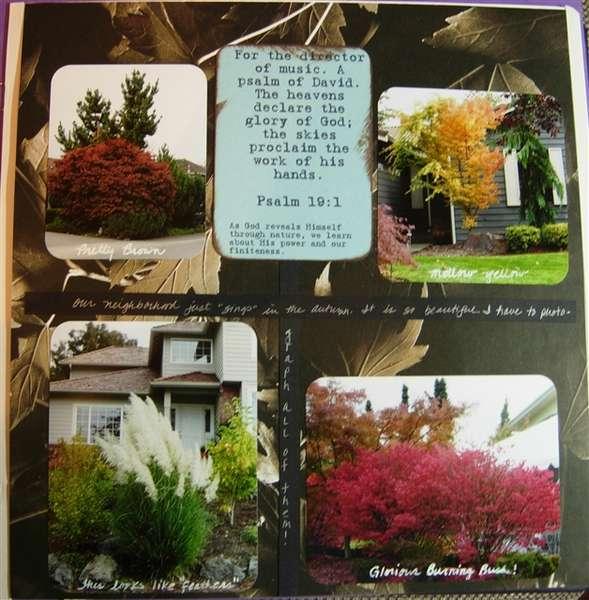 Page 113 Neighborhood