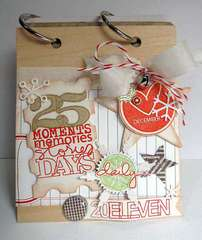 ~ December Daily 2011 ~ **November Studio AE**