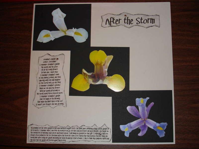 After the Storm- April Inspiration Challenge