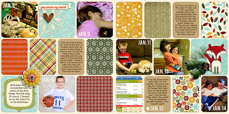 Week 2: Project Life 2014