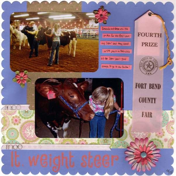 Lt. Weight Steer