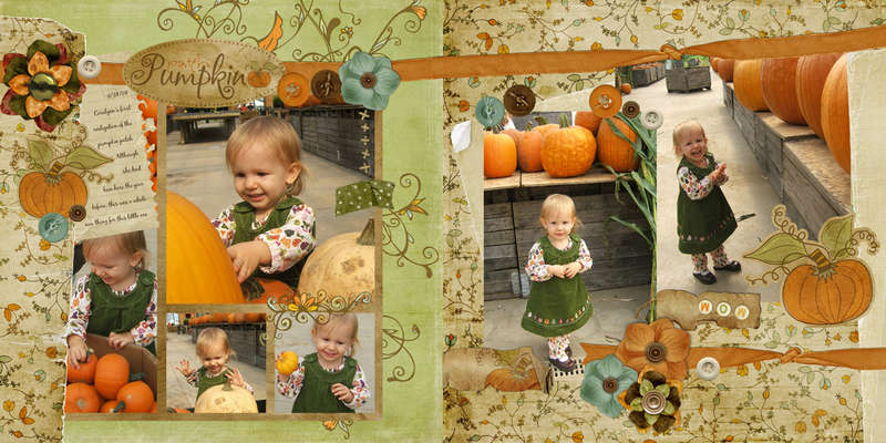 Cora's pumpkin patch
